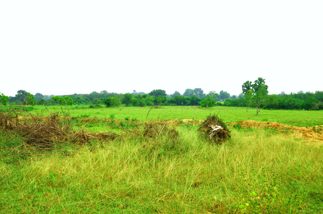 Entrance Land view of Our Ashram in South India