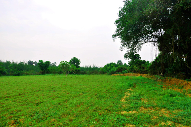 Left Land view of Our Ashram in South India