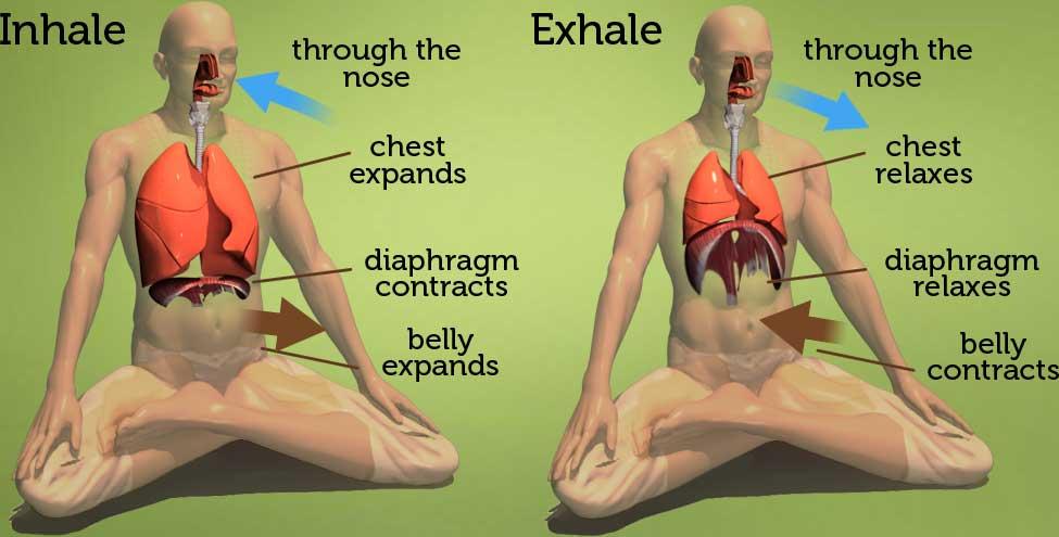Breathing in yoga