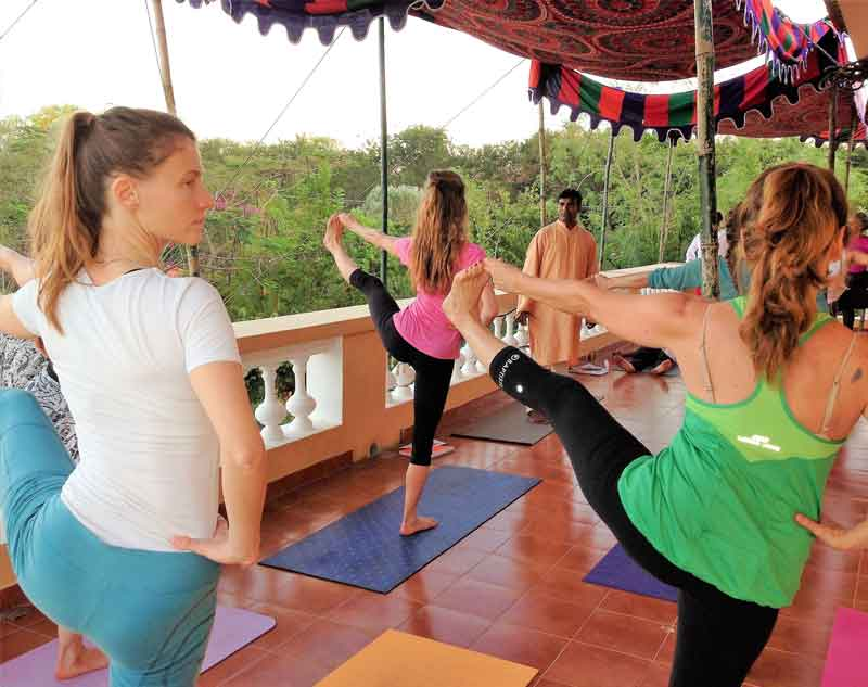 All Ytt Courses Himalayan Yoga Institute